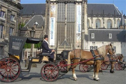 coche-de-caballos-en-amsterdam